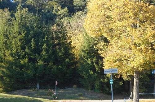 Hart-Autal erhöhte Grünlage 4 EFH in Ziegelmassiv ökologisch,hochwertig  Garten,Terrasse,Carport