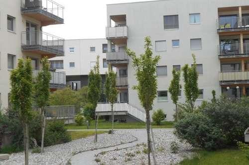 """GARTEN """"Peter Rosegger"""" ZentrumReininghausSüd sonnige 2ZI+Terrasse ruhig,ökologisch Holz/Lehm"""