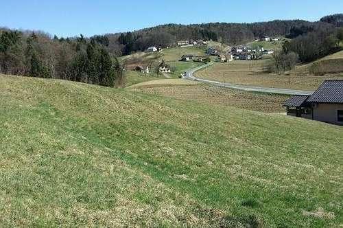Baugrund mit schöner Aussicht  2100 m² Dichte 0,2-0,4 Nähe St.Stefan im Rosental