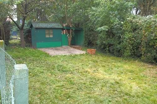 3 Raumwohnung mit extra Garten