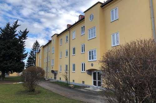 Sanierte Single- oder Pärchenwohnung mit Balkon