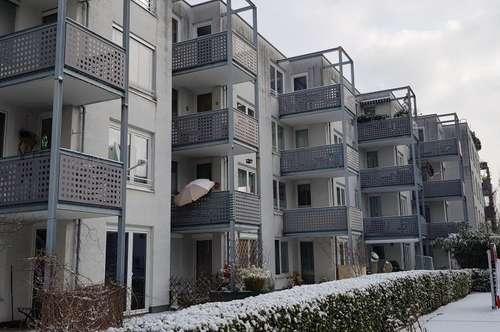 Balkonwohnung in Alt - Maxglan - Ruhelage