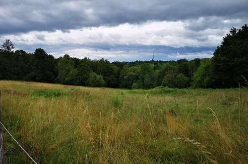 Landwirtschaftlicher Grund in Pinkafeld, 6628 m²