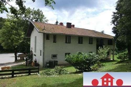 Großes Wohnhaus am Waldesrand mit ca. 7.000m² Grünland und Baulandanteil