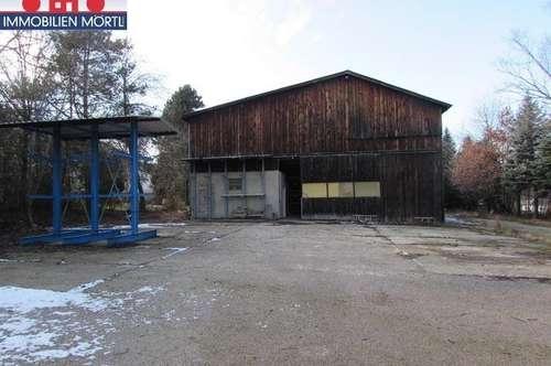 LAGERHALLE 800 m² und LAGERPLATZ 1200 m²
