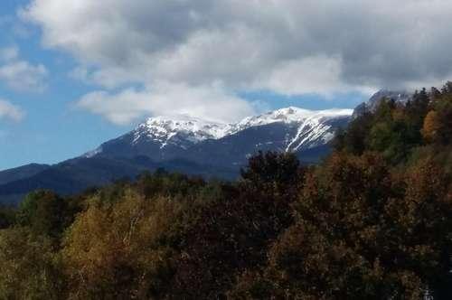 PROVISIONSFREI Parzelle in Waldrandlage in der Tourismusgemeinde Reichenau an der Rax