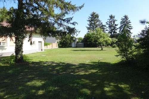 Tadten,ihre Gelegenheit,2 Häuser auf 1764 Quadratmeter Grundstück,Ruhelage.Wachtler Immobilien