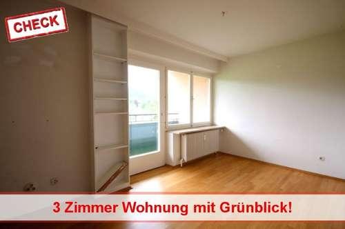 Frohnleiten 3 Zimmerwohnung mit Grünblick!