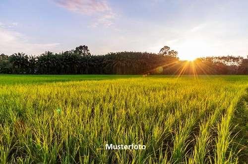 Landwirtschaftl. Anwesen - Versteigerungsobjekt -