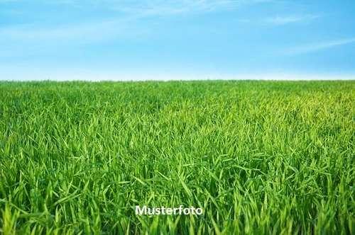 Land und Forstwirtschaft, Fraxern Versteigerungsobjekt