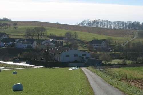 Kleinbauernhof - Bezirk Oberwart - Grenze Niederösterreich/Burgenland