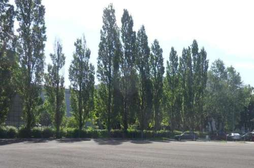 Miete, SELTENHEIT - asphaltierte FREIFLÄCHE im Industriegebiet Strebersdorf