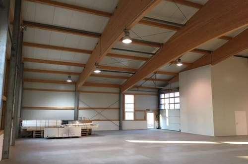 Miete - 700 m² ABHOLMARKT/SPORT-EVENTHALLE - ZENTRUMSNAH UND NÄHE A1 im Raum St. Pölten