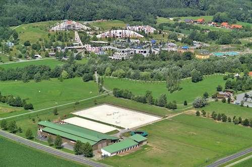 Profi Reitbetrieb, - Reiterhof, neben der Therme Bad Blumau