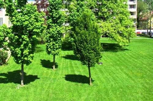 Gartenflair der besonderen Art