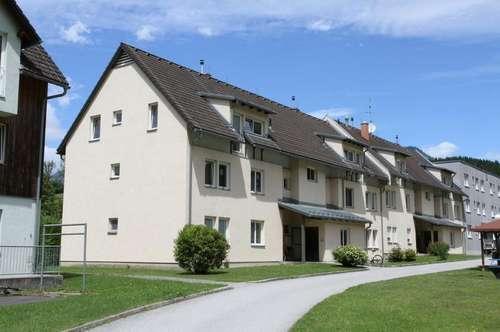 Geräumige 3-Zimmer-Wohnung in Thörl