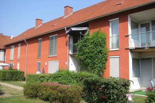 3 Zimmer Mietkaufwohnung in Bairisch Kölldorf 311