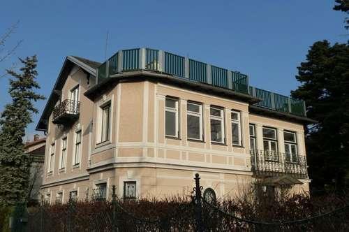 3 Zimmer - Dachterrassentraum im Herzen von Mödling - Altbau!