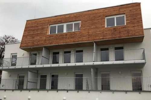Geförderte Genossenschaftswohnung in Miete- NEUBAU