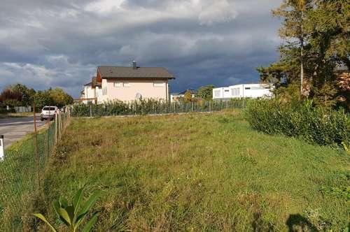 Baugrundstück in Sollenau !