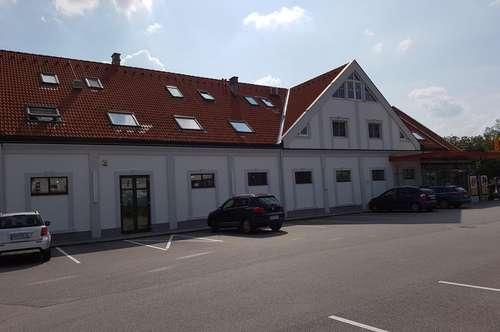 4 Zimmer Wohnung mit Garten in Sollenau !!