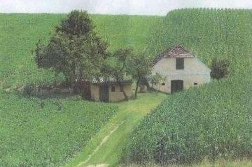Presshaus mit Kellerröhre und Grünland