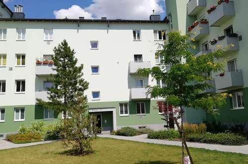 2-Zimmer Mietwohnung in Wiener Neustadt - Fischauer Gasse