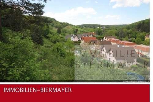 schönes Grundstück in 2391 Kaltenleutgeben zu kaufen
