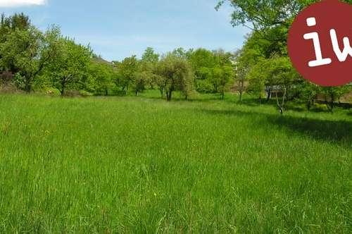 Schönes, sonniges, ebenes Grundstück in Weidlingbach!