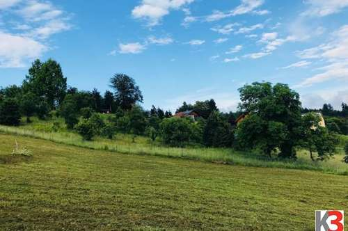 K3! Vasoldsberg - wunderschöner Baugrund mit Süd Ausrichtung