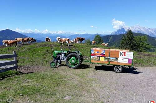 K3!!! Landwirtschaft mit ca. 17 ha und 2 Wasserquellen im Ennspongau zu verkaufen!