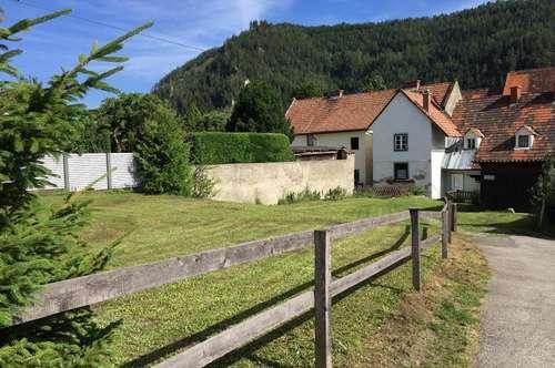 Mehrfamilienwohnhaus im Zentrum mit schönem Grundstück
