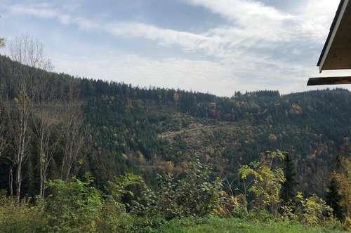 ca. 200 ha Eigenjagd in Graz - Umgebung