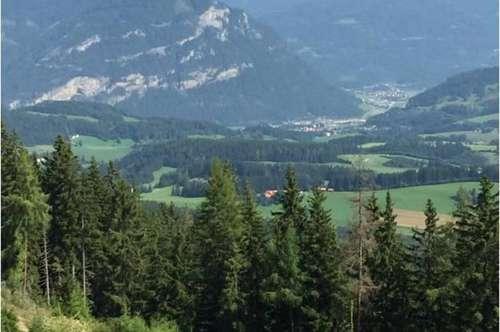 15,40 ha Wald mit kleiner Jagdhütte