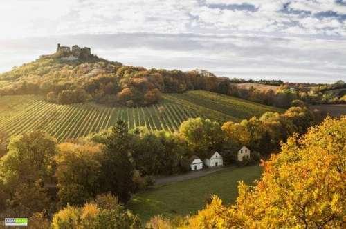 historischer Weinviertler Weinkeller in Falkenstein