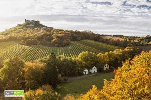 Top sanierter Weinkeller in Falkenstein / Weinviertel