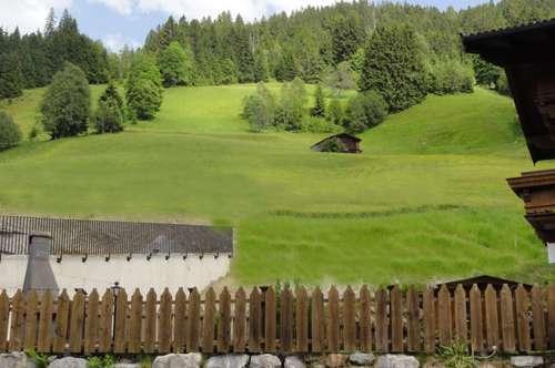Schöne Erdgeschosswohnung Kirchberg