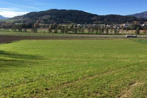 Acker 1,8 ha Untermühlbach St. Veit/Glan