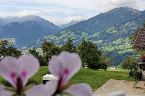 Hart im Zillertal - Traumdomizil mit 3 Zimmern