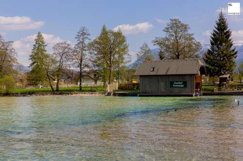 Seegrundstücke am Wolfgangsee zu verkaufen!