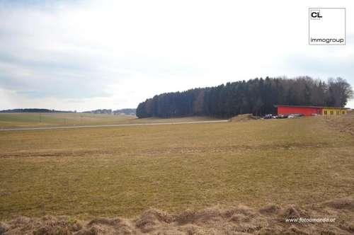 Großes Grundstück im Gewerbegebiet in Feldkirchen bei Mattighofen zu kaufen