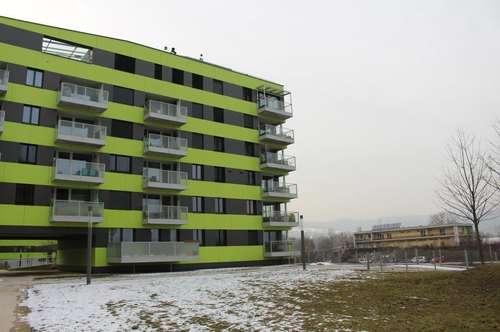Wohnen an der Donau