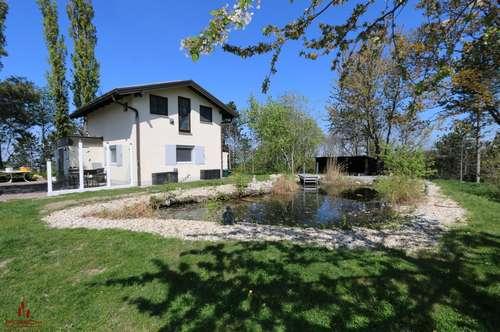 Naturliebhaber, Ruhesuchende, kleines Haus auf über 11.000 m² in Aussichtslage, Mitten im Grünen, kleines Biotop