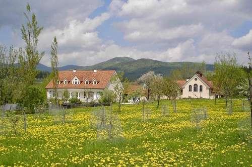 Liebevoll saniertes Anwesen und Seminarzentrum aus dem 16. und 19. Jahrhundert in der Südsteiermark