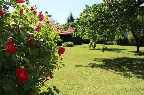 Stadthaus mit herrlichem Garten - optional mit separatem Baugrundstück