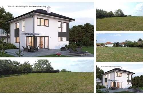 Wippenham/Nahe Ried im Innkreis - Schönes-Elkhaus und Grundstück