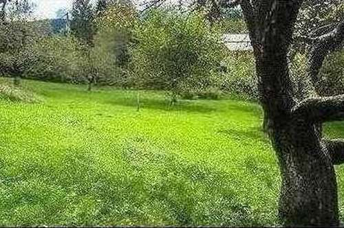 Schönes Grundstück in Hermagor