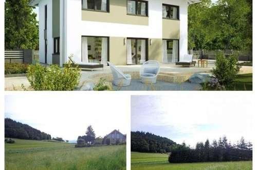 Nöchling - Schönes Elkhaus und Grundstück (2 Parzellen)