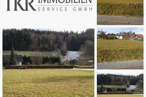 Nahe Gleisdorf/Nahe Graz - Schönes aufgeschlossenes Grundstück
