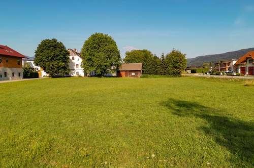 Grundstück mit Althaus und Holzhütte in Weizelsdorf